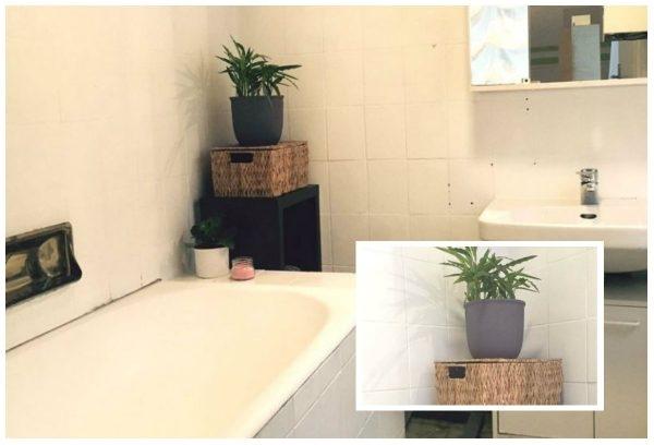 Badezimmer mit Badpflanzen