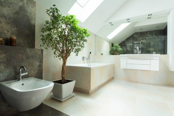 Badezimmer mit Baum im Topf